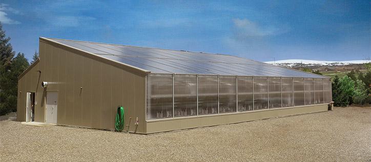 Renewable Energy Smart Greenhouses Generate Solar Power